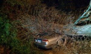 Hadley, NY – 16-Year-Old Killed in Fatal Crash on Antone Mountain Road